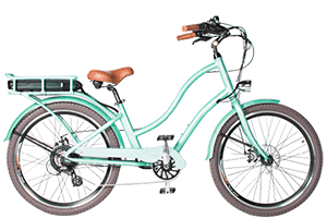 freedom electric bike